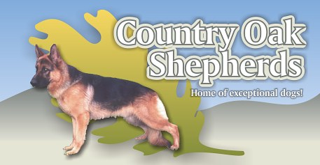 Country Oak Shepherds logo